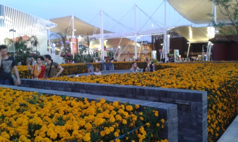 Colture- Expo 2015