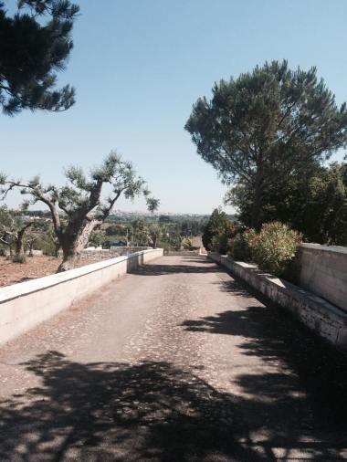 Verso il Trullalegro, Noci, Puglia