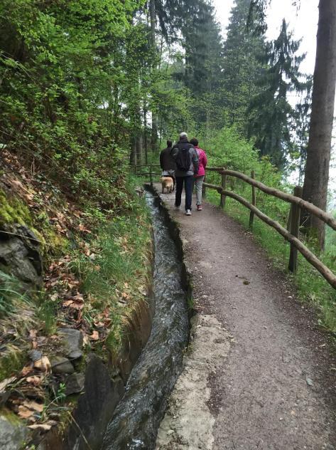 passeggiate Merano- Hotel Gutemberg- Schenna