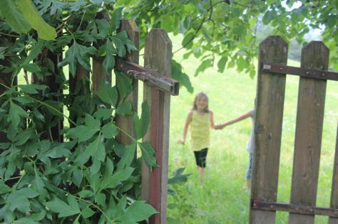 cancello giardino-Hotel Gutemberg- Schenna