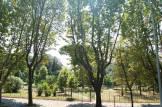 casa_vacanze_casina_degli_aranci_parco