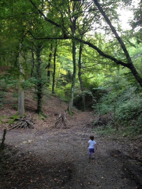 8 boschi incantati in cui perdersi. Lombardia Parco del Curone.