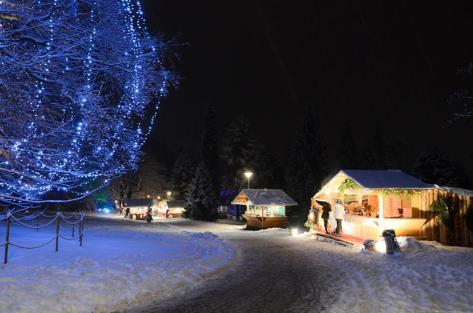 Mercatino di Natale al Parco degli Asburgo Levico Terme