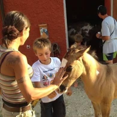 Conoscenza animali- Agriturismo Podere Morgana