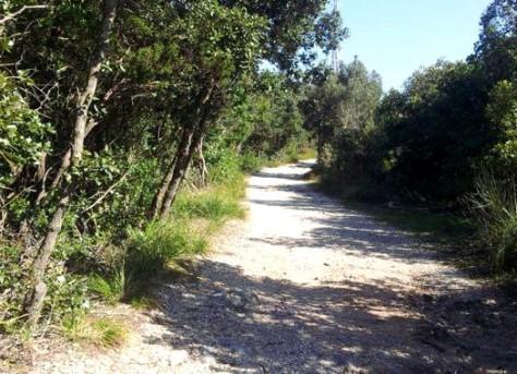 sentiero per la spiaggia al residence Mareblù