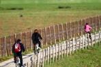 Parco della Maremma-itinerari in bici