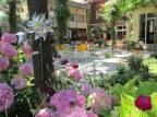 Al cacciatore di sogni, family hotel a Milano Marittima