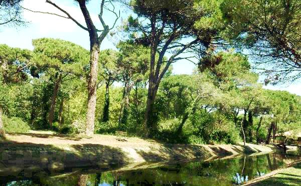 A Cervia per una vacanza naturale senza rinunciare alla Riviera Romagnola