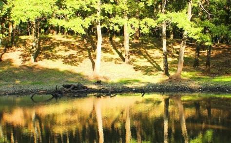 lago di Lesina, residence green garden vieste
