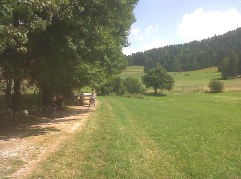 Sentieri in Alpe Cimbra