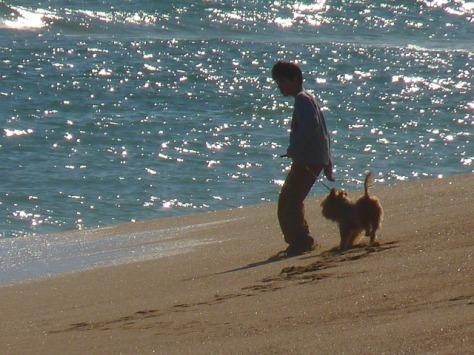 in vacanza al mare col cane