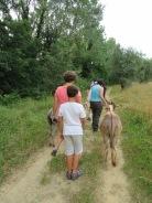 trasimeno_attivita_bambini_asini_passeggiata
