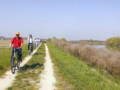 delta_del_po_bike_boat