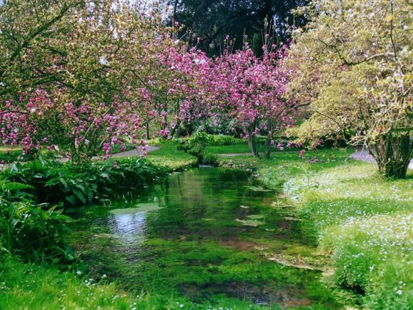 parco_naturale_giardino_di_ninfa_corsidacqua
