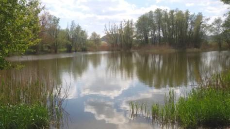 Panorama del parco colfiorito
