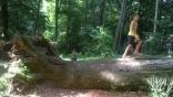 gargano-foresta-umbra-giocabosco9