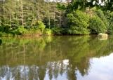 gargano-foresta-umbra-lago2