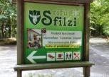 gargano-foresta-umbra-sfilzi