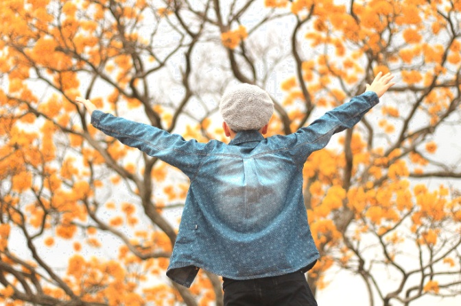 Godersi l'autunno e l'inverno con gli  eventi per famiglie e bambini