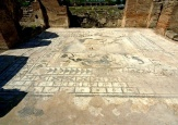 Parco Archeologico di Elea-mosaico