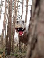 dinosauri_parco_munchehagen2