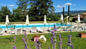 agriturismo_fattoria_marena_bibbiena_toscana_piscina