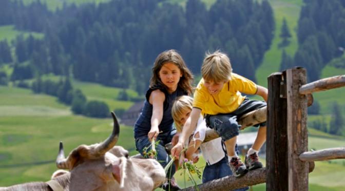 Nella bella fattoria: 35 agriturismi per famiglie dove si sta assieme agli animali