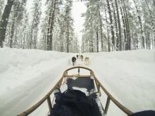 lapponia_family_Rovaniemi