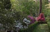 Firenze con i bambini Orto Botanico