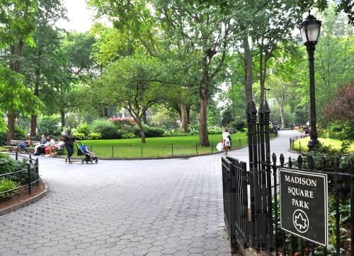 Viaggio a New York per famiglie-Madison Square Park