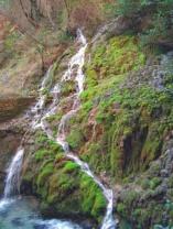 Parco Grotte Cascate del Varone-esterni