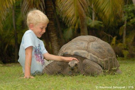 Seychelles_Boy_Toutoise