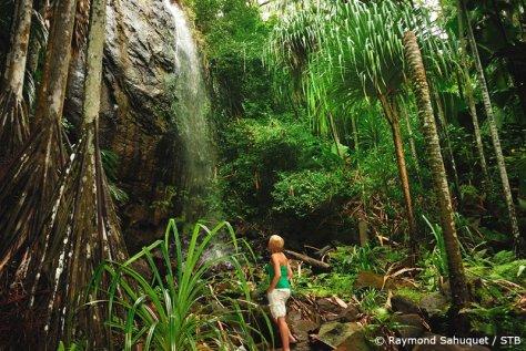seychelles_Waterfall-Valle-De-Mai
