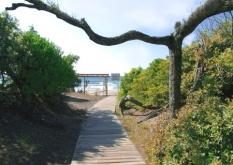 Parco_naturale_rimigliano-passerelle